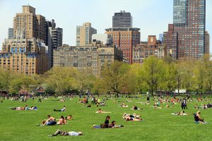 A photo of people relaxing in the grass at Sheep Meadow Central Park, New York.