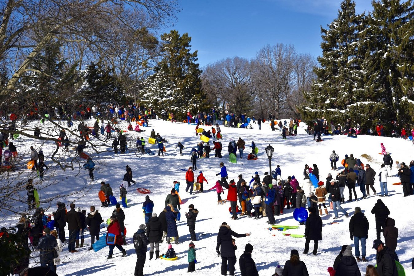 On the 9th day of Christmas… Sledding in the Parks
