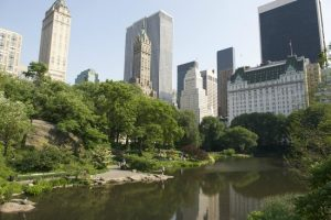 A photo of a pond in Central Park New York City